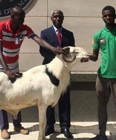 Sénégal :                         MACKY SALL MONTRE SA GÉNÉROSITÉ À L'AMBASSADEUR AMÉRICAIN AU SÉNÉGAL ET SE HEURTE À UN RAPPEL DE LEÇON DE VIE.